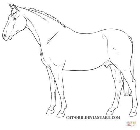 ausmalbilder pferde malvorlagen kostenlos zum
