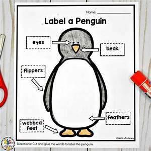 Penguin Activities For A Winter Animal Unit Of Mini