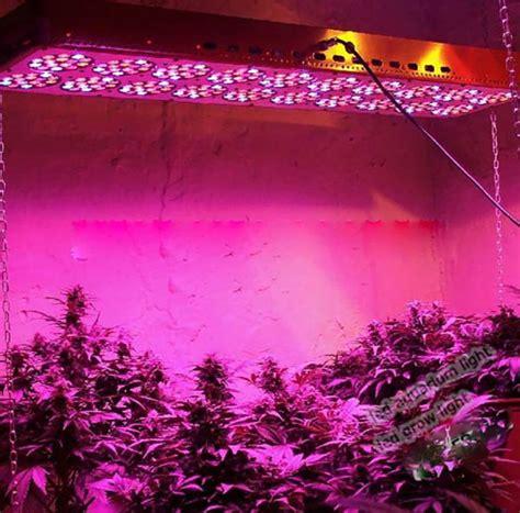 best grow lights for seedlings bossled 1200w full spectrum led grow light bossled