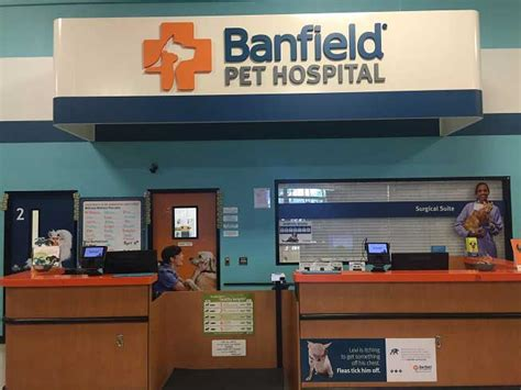 Banfield Pet Hospital® Location At 5707 W Eye And Art Japanese Fish Vector Fruit Tray Gold Wall Prints Contest Welding Project Ideas Nail Tutorial Unframed