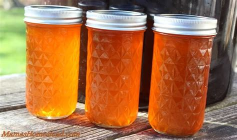 Kitchen Hacks Orange by Pin By Nelle S Homestead On Recipes And Kitchen