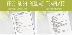 social resume for sorority best 25 sorority resume ideas on