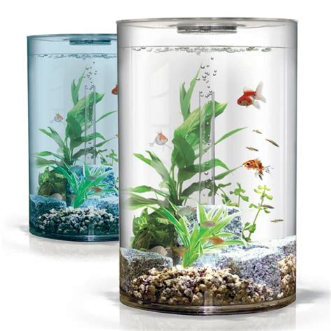 aquarium pas cher un aquarium design pas cher quelques id 233 es en photos archzine fr