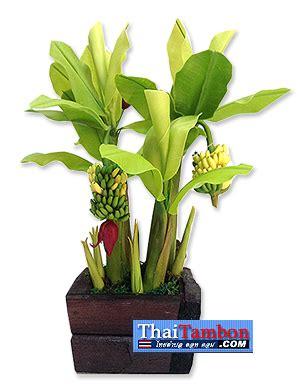 ต้นไม้ประดิษฐ์ ต้นกล้วย : ไทยตำบล