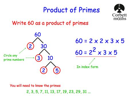 Glossary Of Terms Commonly Used In Primary Revision Prime Factorisation Corbettmaths