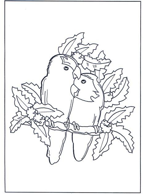papagei paerchen ausmalbilder voegel