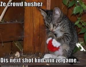 basketball cat sports skeptisys