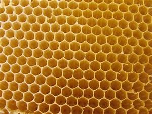 Hive Chair   Aoanan Arkitektos Studio: Providing solutions ...  Honeycomb