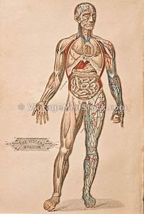 Vintage Medical Stock Photos