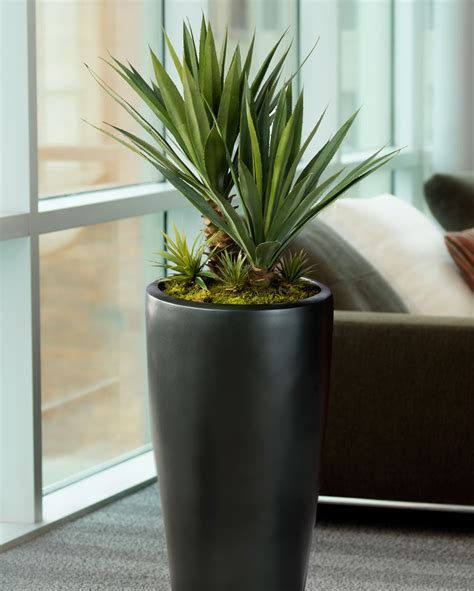 distinctive agave americana artificial succulent for business and home decor at officescapesdirect