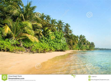 tropical island landscape tropical island landscape royalty free stock photography image 11694727