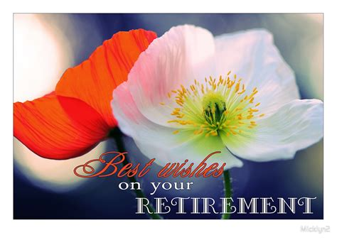wishes   retirement poppies  micklyn