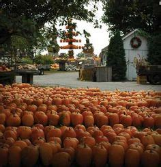 Central Illinois Pumpkin Patches by 1000 Images About Arthur Illinois Amish On Pinterest
