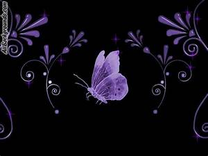 Violet Butterfly Backgrounds - Twitter & Myspace Backgrounds