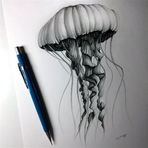 Jellyfish Drawing By Lethalchris On Deviantart