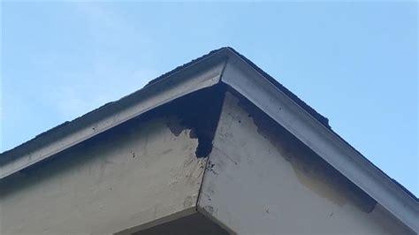roof leaking  fascia  eaves roofingsiding diy