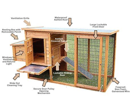 Chicken House Designs by Learn How To Build Chicken Coops Or A Hen House With Easy