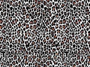 Cheetah Animal Print Vector | www.imgkid.com - The Image ...