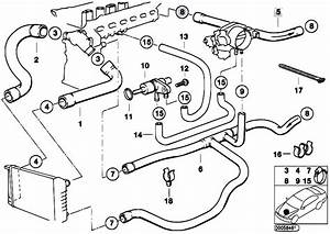 Original Parts For E36 320i M50 Sedan    Engine   Cooling System Water Hoses