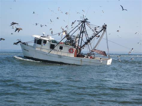 Commercial Shrimp Boats For Sale In Mississippi by Shrimp Boats Becky Eldredge