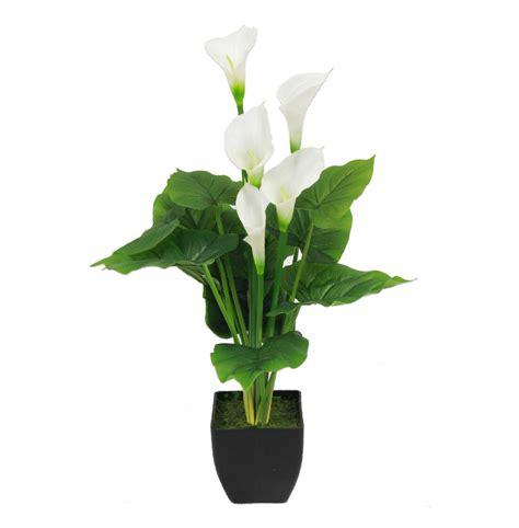 artificial calla lily blooming artificial