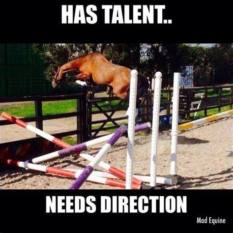 Horse Riding Meme - 222 best images about horses on pinterest