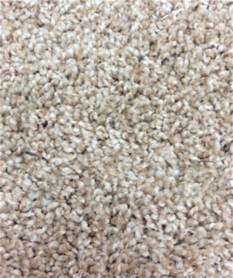 Mohawk Carpet   Stylish Comfort (1R56)   Color Harmony