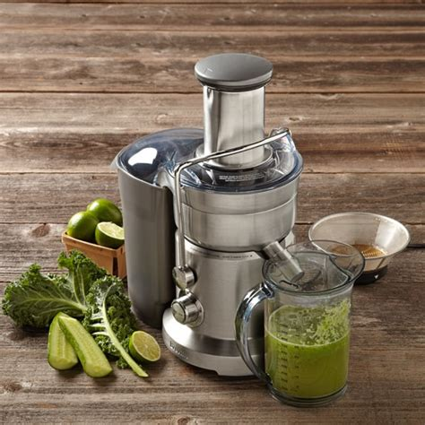 breville juicer juice fountain duo vegetable sonoma williams juicing omega juicers win