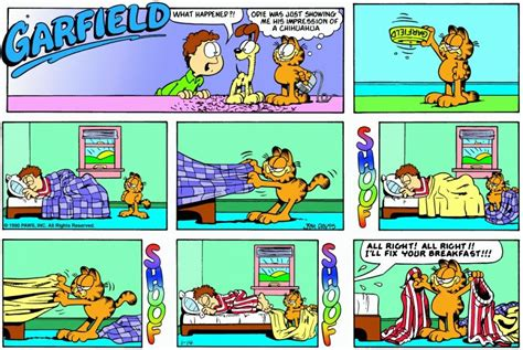 The Garfield Daily Comic Strip For