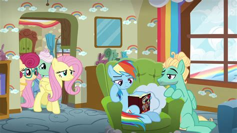 My Little Pony Fluttershys Parents