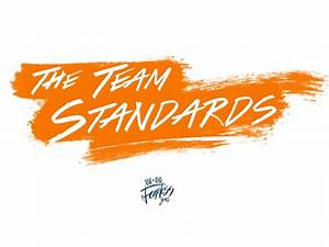 Aiesec  The Team Standards