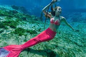 Aripeka West Daily  Real Live Mermaids