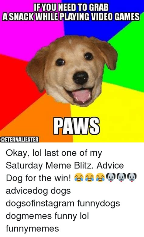 Advice Dog Meme - funny funny lol and video games memes of 2016 on sizzle