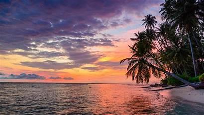 Sunset Laptop Tropical 4k Desktop Landscape Trees