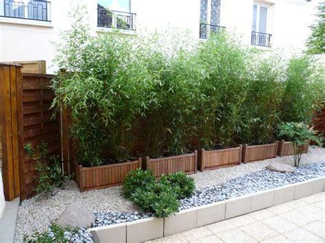 haie de bambous en pots ext 233 rieur pots cl 244 ture et