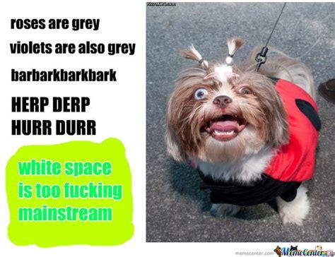 Derp Dog Meme - derp dog by recyclebin meme center