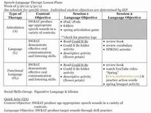 speech pathology lesson plan template - school paperwork on pinterest data collection speech
