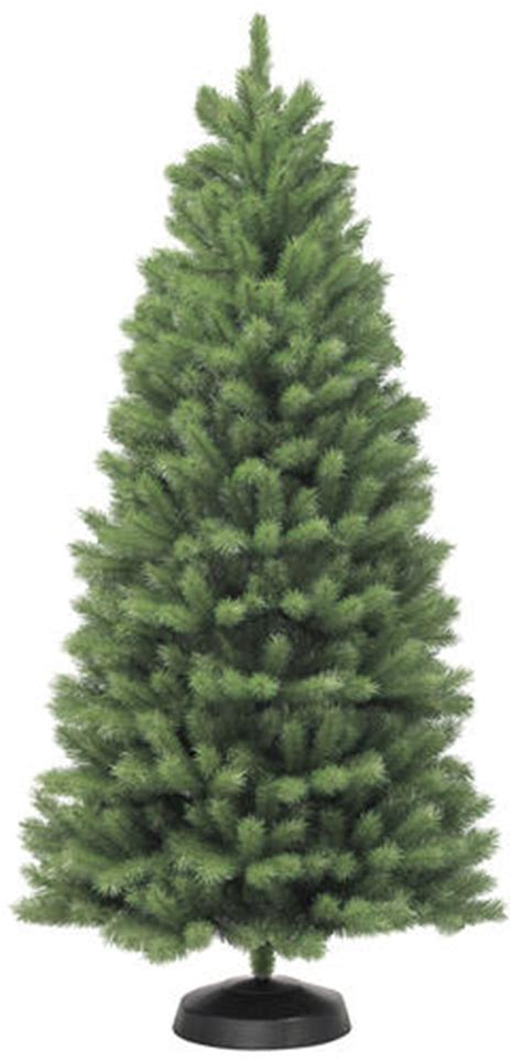christmas trees for sale near me 7 5 northern spruce tree at menards 174
