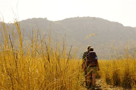 Safari Guide Training in Southern Africa ⋅ Natucate