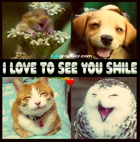 love    smile graphics quotes comments