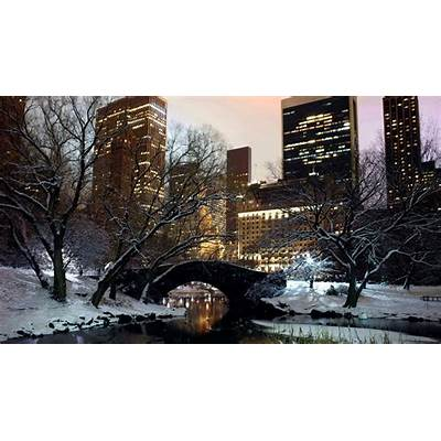 New York Central Park Popular Place In - Tedy Travel