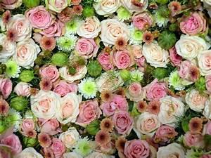 Blumen Bedeutung Hochzeit : die blumen hochzeit und die sprache der liebe myprintcard ~ Articles-book.com Haus und Dekorationen