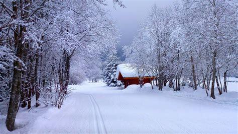 4k Snow Wallpapers Hd #67653 Wallpaper