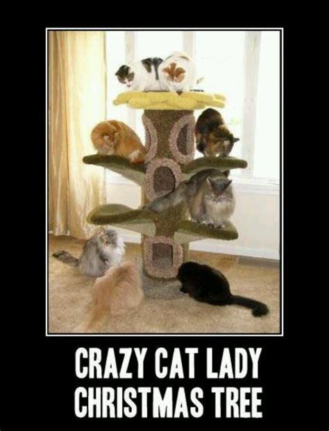 crazy cat lady xmas tree cats funny christmas cute memes