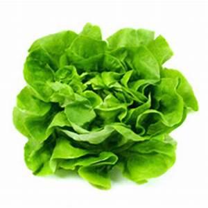 Salat Pflanzen Abstand : meine ernte salat anbauen pflegen ernten und lagern ~ Markanthonyermac.com Haus und Dekorationen