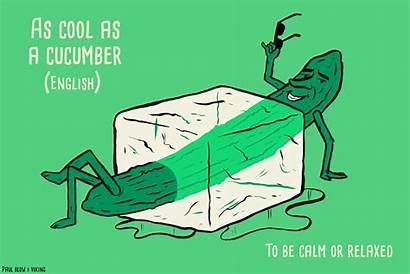 Phrases Blow Cucumber Illustrates Paul Languages Foreign