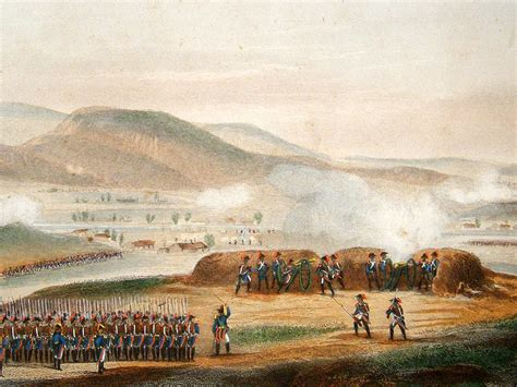 siege napoleon opinions on siege of toulon