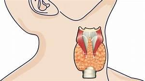Лекарство при аденоме предстательной железы