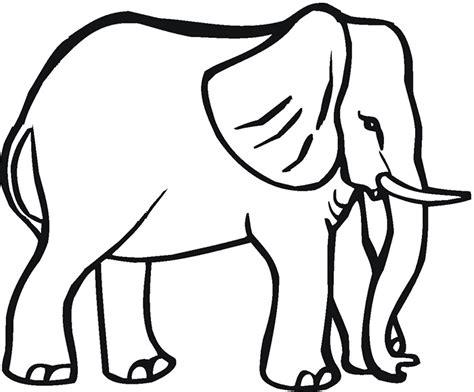 drawn elephant traceable pencil   color drawn