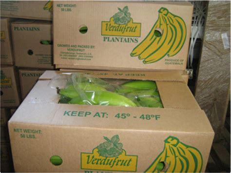 verdufrut plantain green